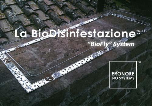 Azienda installazione fili elettrificati per volatili piccioni Milano