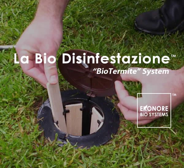 Azienda disinfestazione Milano
